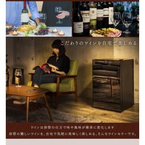 ワインセラー 家庭用 24本 ミラーガラス 2ドア 2温度設定 おしゃれ ペルチェ式 ワイン収納 APWC-69D|joylight|02