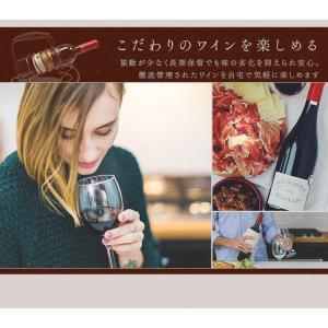 ワインセラー 家庭用 24本 ミラーガラス 2ドア 2温度設定 おしゃれ ペルチェ式 ワイン収納 APWC-69D|joylight|12
