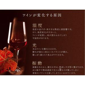 ワインセラー 家庭用 24本 ミラーガラス 2ドア 2温度設定 おしゃれ ペルチェ式 ワイン収納 APWC-69D|joylight|03