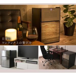 ワインセラー 家庭用 24本 ミラーガラス 2ドア 2温度設定 おしゃれ ペルチェ式 ワイン収納 APWC-69D|joylight|10