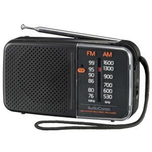 スタミナハンディラジオ RAD-H245N オーム電機 (D) joylight