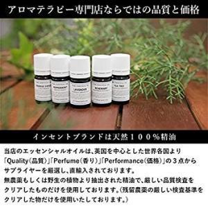 ペパーミント 50ml インセント アロマオイル AEAJ 表示基準適合認定精油