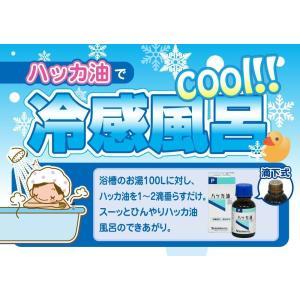 食品添加物ハッカ油P 20ml(アロマ・お風呂・虫よけ)