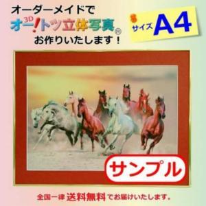 【A4オーダーメイド】オー!トツ立体写真(A4サイズ)(価格は参考価格となります)立体写真|jp878