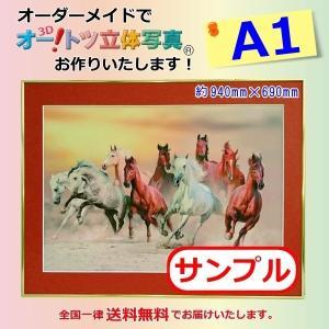 【A1オーダーメイド】オー!トツ立体写真(A1サイズ)(価格は参考価格となります)立体写真|jp878