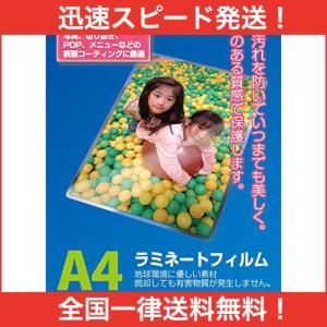 ナカバヤシ ラミネートフィルム 100枚入 216×303mm A4サイズ LPR-A4E2
