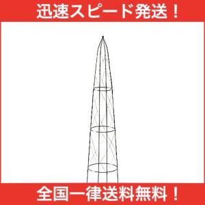 アサヒペン タワートレリス TOR-120