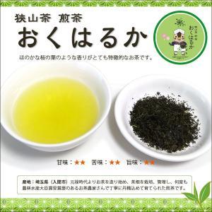 お茶 緑茶 入間市 いるティー お試し 狭山茶 煎茶おくはるか 50g|jpkelena