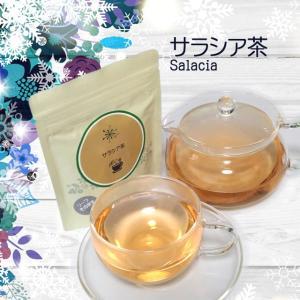 ハーブティー ティーバッグ ノンカフェイン お試し サラシア茶 3g×7ティーバッグ サラシアレティキュラータ|jpkelena
