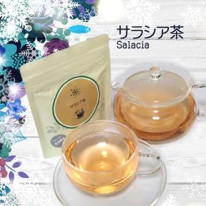 ハーブティー ティーバッグ ノンカフェイン お試し サラシア茶 3g×7ティーバッグ 2個セット サラシアレティキュラータ|jpkelena