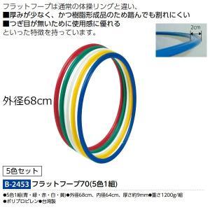 トーエイライト フラットフープ70(5色1組) B-2453 <2019CON> jpn-sports