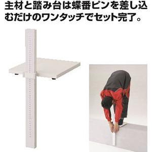 ダンノ 学校 体育 体力測定 立位体前屈測定器 D-3638 <2019CON>|jpn-sports