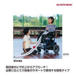 エバニュー 体つくり ボッチャ用ランプス 受注生産品 ETE032 <2019CON>|jpn-sports