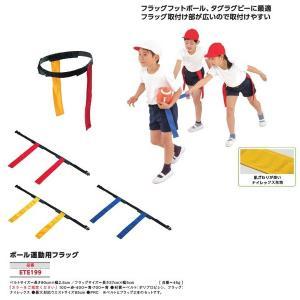 エバニュー 学校 体育 ボール運動 ボール運動用フラッグ ETE199 <2019NEW>|jpn-sports