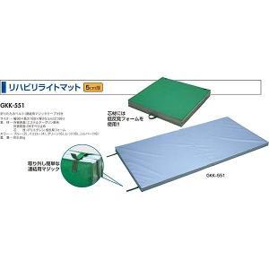 中津テント 介護 介護用マット リハビリライトマット 5cm厚 レッド GKK-551-8 <2019CON>|jpn-sports