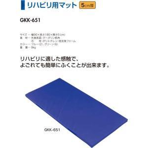 中津テント 介護 介護用マット リハビリ用マット 5cm厚 グリーン GKK-651-6 <2019CON>|jpn-sports