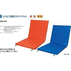 中津テント 介護 介護用マット リハビリ防火ライトマット ブルー GKK-652-2 <2019CON>|jpn-sports
