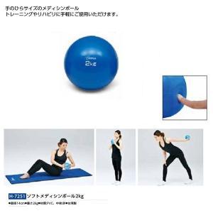 トーエイライト ソフトメディシンボール2kg H-7251 <2019CON>