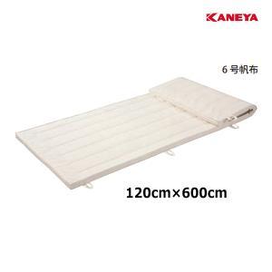 カネヤ 学校 体育 体操 体操マット6 5×120×600 K-4109 <2019NP>|jpn-sports