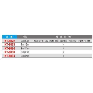 寺西喜 安心ネット(防犯ネット) KT-8034 <2019CON>|jpn-sports