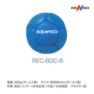 ナガセケンコー レクリエーションボッチャボール青 REC-BOC-B <2019CON>|jpn-sports