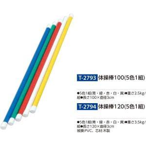 トーエイライト 体操棒100(5色1組) T-2793 <2019CON>|jpn-sports