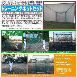 少年軟式野球用バッティングネット TN-2128 梱包サイズ250 jpn-sports