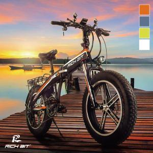 電動自転車 電動バイク モペット RICHBIT TOP016 SmartEV ペダル付き電動自転車...
