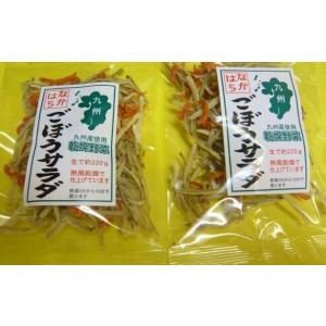 特価 災害対策品 しかも安心安全!九州産 乾燥野菜 ごぼうサラダ 3袋 生でしたら約220g×3です送料無料!代引き不可! jr-gurume