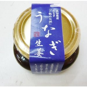 やけくそ特価 高知産 うなぎ生姜 1個 四万十鰻と有機栽培の生姜を使った四国産 |jr-gurume