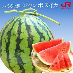 ふるさと駅 ジャンボすいか 熊本植木産特大スイカ 9kg超1玉