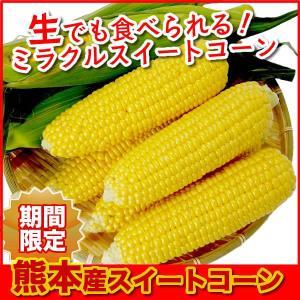 父の日 ギフト   ふるさと駅 フルーツとうもろこし 10本  熊本県産  冷蔵 jrk-shoji