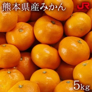 九州 ギフト 2019 ふるさと駅 早生みかん 5kg  熊本県産  常温 jrk-shoji