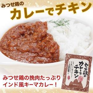 九州 ギフト 2019 ヨコオフーズ みつせ鶏のカレーでチキン 6袋  23891|jrk-shoji