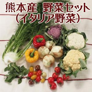 お中元 ギフト 2018 ※天候による商品不足の為今季は販売見合わせとなりました。 ファームプロデュース熊本産 野菜セット イタリア野菜詰合せ  熊本県産  冷蔵 jrk-shoji