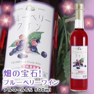 九州 ギフト 2019 立花ワイン ブルーベリーワイン 500ml  化粧箱入  常温|jrk-shoji