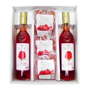 九州 ギフト 2019 立花ワイン 博多あまおうワイン2本&ゼリー3袋セット 常温|jrk-shoji