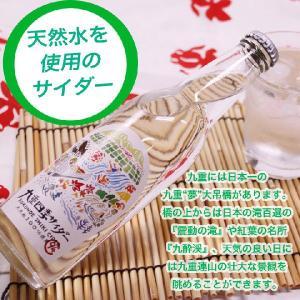 お歳暮 友桝飲料 九重四季サイダー 24本入  天然水サイダ...