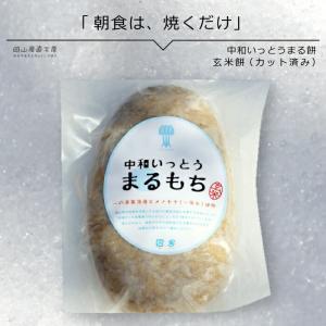中和いっとうまる餅 玄米 400g  お歳暮 お正月 ギフト|jshop-web