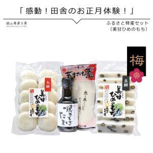 ふるさと特産セット梅  ひめのもち白餅 豆餅 焼餅のタレ 甘酒 真庭市美甘|jshop-web