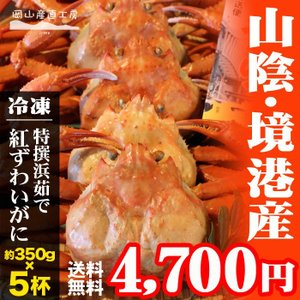 【山陰境港直送】境港産 浜茹で紅ズワイガニ(約300g×5枚) jshop-web