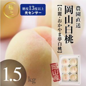 岡山白桃 今井名人の極上白麗・おかやま夢白桃 センサー5〜6玉1.5kg