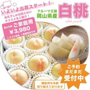 訳あり岡山白桃  白麗・おかやま夢白桃 3kg...