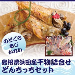 干物詰合せどんちっちセット 送料無料 島根県浜田産 ギフト ありがとうギフト