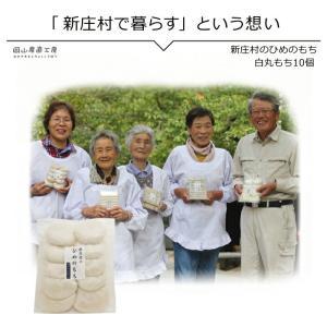 白丸もち10個入り 新庄村のひめのもち |jshop-web