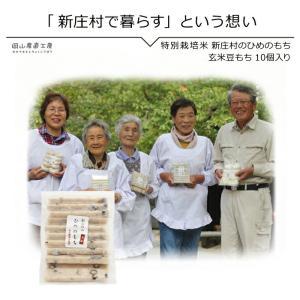 玄米豆もち10個入り 新庄村のひめのもち |jshop-web