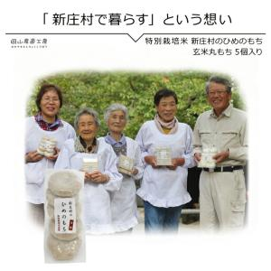 玄米丸もち5個入り 新庄村のひめのもち |jshop-web