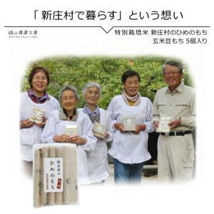 玄米豆もち5個入り 新庄村のひめのもち |jshop-web