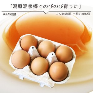 コク旨濃厚 平飼い卵10個入X4回分 定期野菜セット同梱専用4回お届け|jshop-web