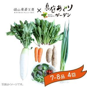 岡山産直 定期野菜セット おまかせ7品×4回分...